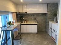 金山湖中心45平精装公寓出售 单价1.1万元中间楼层 带全屋精装修 奥园领寓