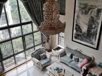 红花湖大双拼别墅 超级豪华装修 送400平方私家花园 装修200多万 带私家车库