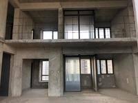 商业综合体旁 江景复式 挑高中空大厅 六房四卫 金山新天地