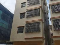 出租淡水白云坑市场附近2室1厅1卫60平米800元/月住宅