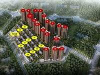 仲恺一手新房 视野开阔 地段旺 25万可以首付 刚需 投资自住都可以