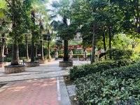 鑫月城 欢乐海湾商业综合体 繁华地段 周边配套成熟 两房精装修