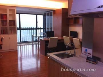 德明合立方国际公寓 样板房-客厅