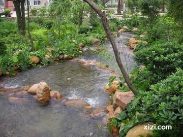 社区小溪径