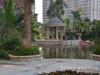 金山湖鸟巢旁中信凯旋城二期高层楼王,南北通透看别墅,景观超好金属173万