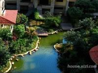 东平高档小区 东方威尼斯花园 标准1房1厅1卫精装出租 1800/月家私家电齐全