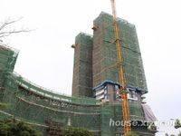 隆生东湖9区工程进度图