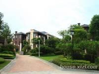 鼎峰国汇山 高层南向四房 精装修 仅售245万 带南坛分校9年制学位