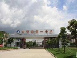 大亚湾第一中学(洗马湖路)
