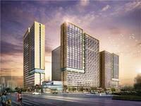 金山湖岛内 商业旺铺6米层高 39平米 114万,网红街