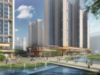 中洲半岛城邦 大楼盘 大开发商 带实验学校