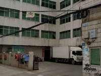 低价出售仲恺独院厂房一万一平方出售价1800