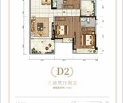 D2三房两厅两卫