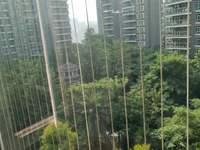 金迪八期内电梯房,南北通,阳光充足,朝向小区,风景好