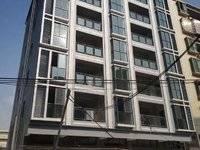 出售碧桂园天骄公馆旁边经济自建房3室2厅1卫28万住宅