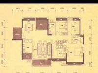 金山湖中信凯旋城二期 大5房 花园中间 173平方200万 单价11500 可看