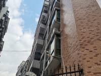 下角丽日附近凌湖轩复式房出售 朝南 毛坯 单价5字头 电梯房 超低价出售