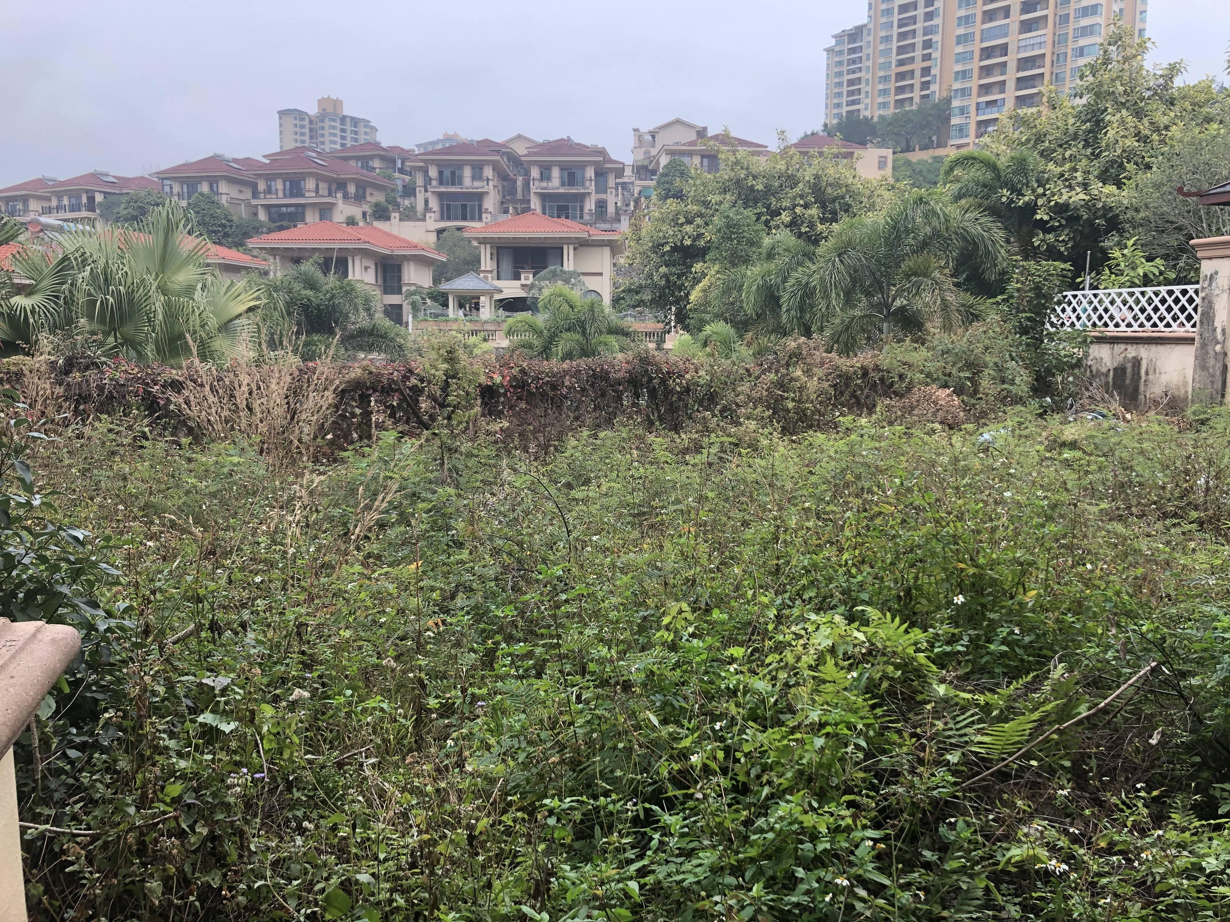 低于市场价40万的独栋别墅 带400平方私家花园 写意般的家园 随性装修