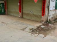 出租泰宇 城市中央60平米2500元/月商铺