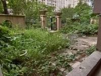 一楼真复试 带私家大花园 使用率高大200多平方 胜过住别墅 看房有钥匙