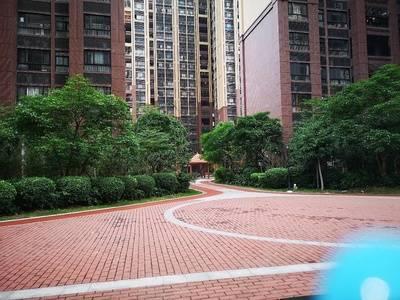 江北CBD金鼎雅苑 南北通透,全新四房出售,楼层不错随时看房