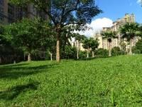 一中惠南学校,南北通透,花园中间一站式学区房。东江学府三期一区