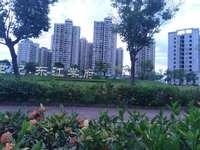东江学府五期,南北通透,读惠南。