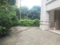 金山湖花园3600出租可做教育办公