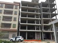 马安6层半自建房整栋低价出售