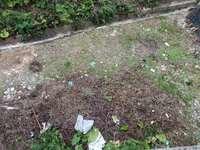 鹏基万林湖双拼毛坯别墅,送200平米花园三面采光,证满五年,格局任意可以改动
