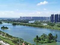 笋干爆炸 东江新城 隆生物业文岭西堤 楼王凸出户型 高层看江景 看房方便
