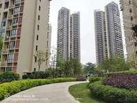 湖水岸城隔壁,楼王单位丽景湾上朝南看花园3房94平115万