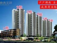 新房 特色水景园林、一江三公园