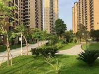 惠博路 博景湾 一期已交楼 二期现房 即买即装修 单价8000多 近高铁 通深圳