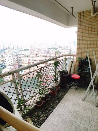 个人急售:世纪新天世纪阁11B,电梯三房两厅,欢迎中介朋友代理