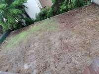 鹏基万林湖山顶独栋别墅,四面花园近400平米,使用面积1000多平米,诚意急售