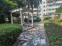 长湖苑对面 交警支队宿舍大三房出售,3楼直接入住 包补地价 可按揭