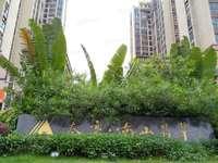 市中心三环新天虹商圈 泰豪南山翡翠 复式5房出售 稀缺露台 阁楼 阳光房集一体