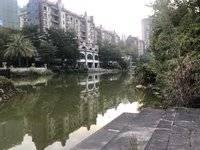 保利真藏 湖景独栋 稀缺超大别墅 仅交契税 535²仅售730万
