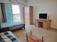 出租江北义乌公寓,一房,免中介费