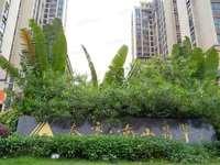 南山学校旁泰豪南山翡翠 122平南北通透4房 户型方正 环境优雅