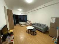 奥园领寓 家私家电全齐 花园公寓 惠州少有 多套出租 有带家私家电 有空房出租
