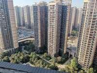 中洲天御楼王中的楼王,高层视野好,可以看湖景,超长阳台,价格美丽!