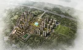 新城·金樾江南