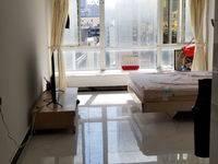 出售巴黎广场1室1厅1卫45.28平米132万住宅,重点一中学位,朝南中间楼层