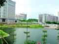 惠城区江北TCL雅园电梯2房出售92万