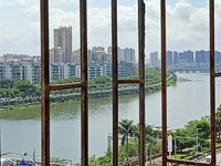 河南岸,一线江景,南阳苑,不用补地价,实用三房,计划加装电梯中