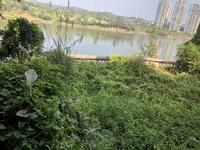 白鹭湖独栋别墅 前后花园400多平 面积273.29平米 730万包过户