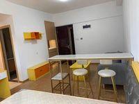 金山湖中心 45平精装修公寓 适合单身男女居住 楼层高视野好