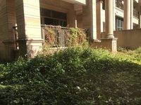笋!笋!笋!洋房价购双拼别墅300平私家花园 钥匙在手 德威朗琴湾